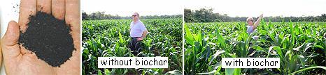 biochar108