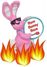 bunnyburn1